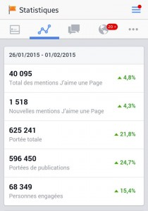 statistiques-facebook-myloirevalley-2015